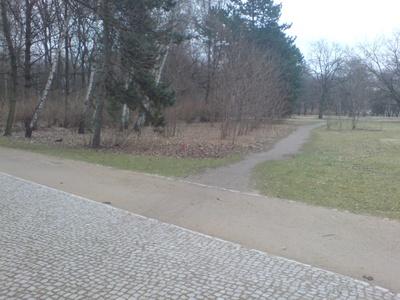 Desire_lines_berlin_6